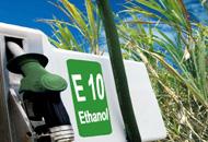 E10, Sprit, Benzin, vernichtet regenwald, tanken