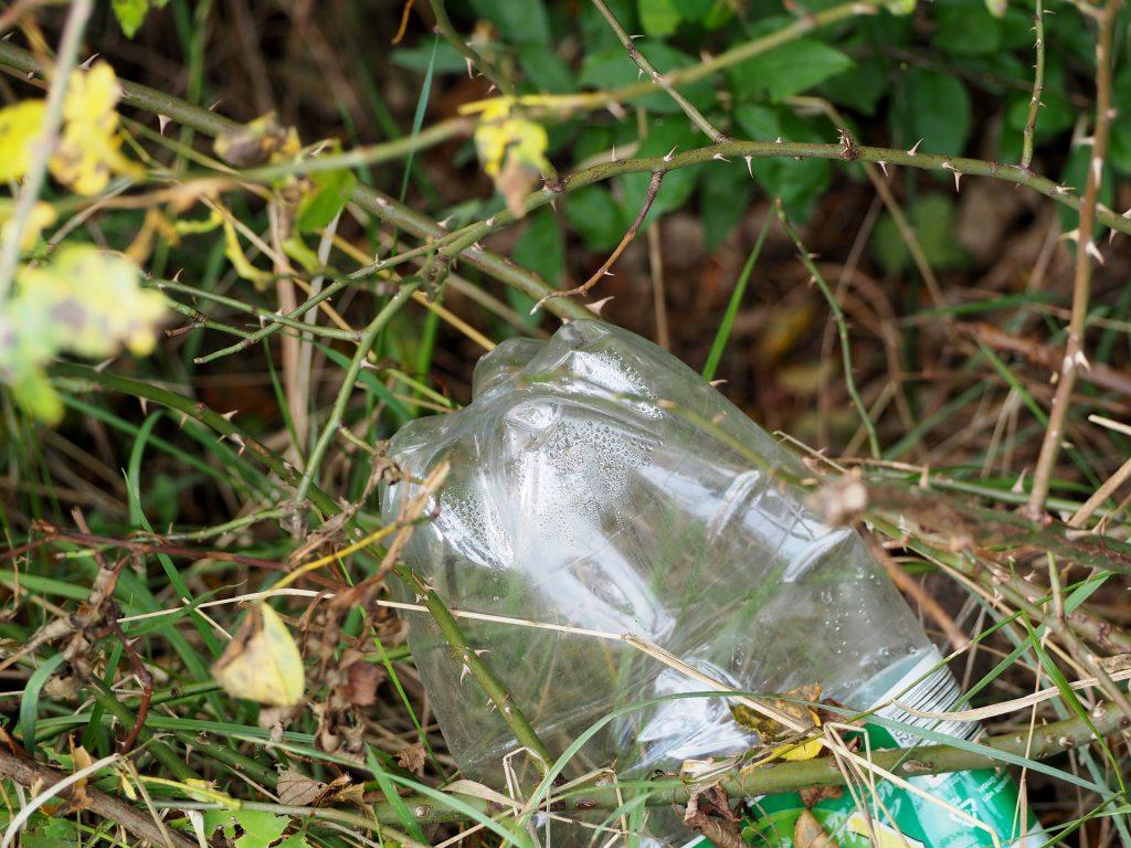 Eine Plastikflasche die in Natur weggeworfen wurde