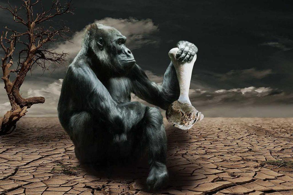 Ein Gorilla mit einem Knochen in der Hand, der in einer kahlen Wüstenwelt ohne Nahrung sitzt.