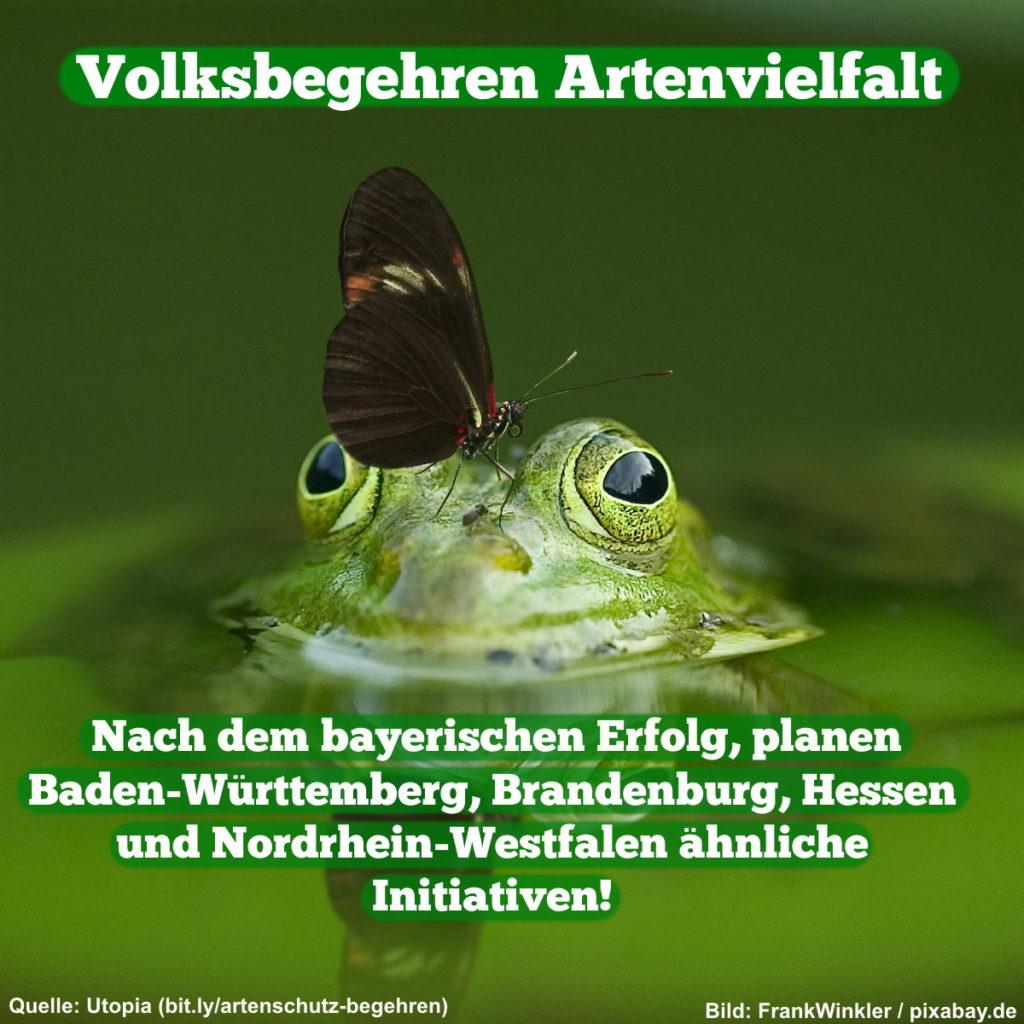 Volksbegehren Artenvielfalt - Nach dem bayerischen Erfolg, planen Baden-Württemberg, Brandenburg, Hessen und Nordrhein-Westfalen ähnliche Initiativen.
