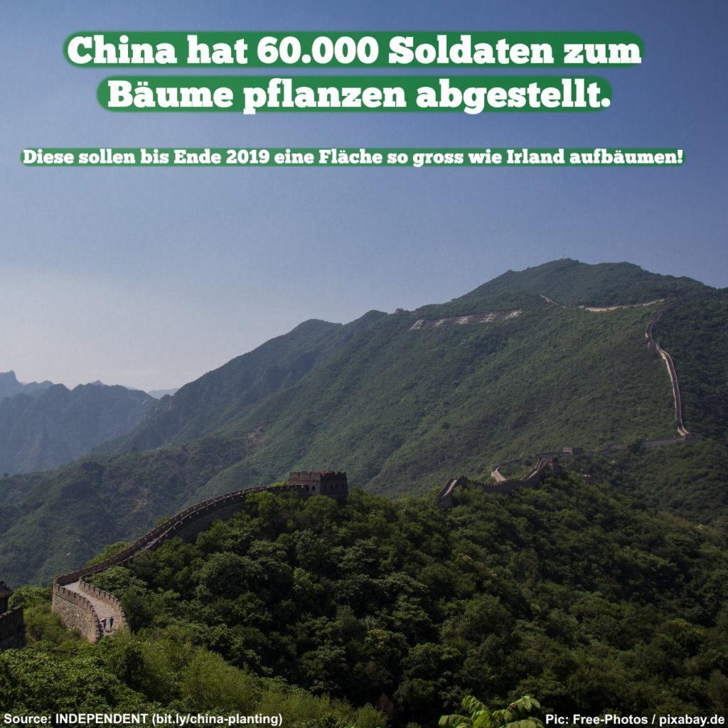 China hat 60.000 Soldaten zum Bäume pflanzen abgestellt.