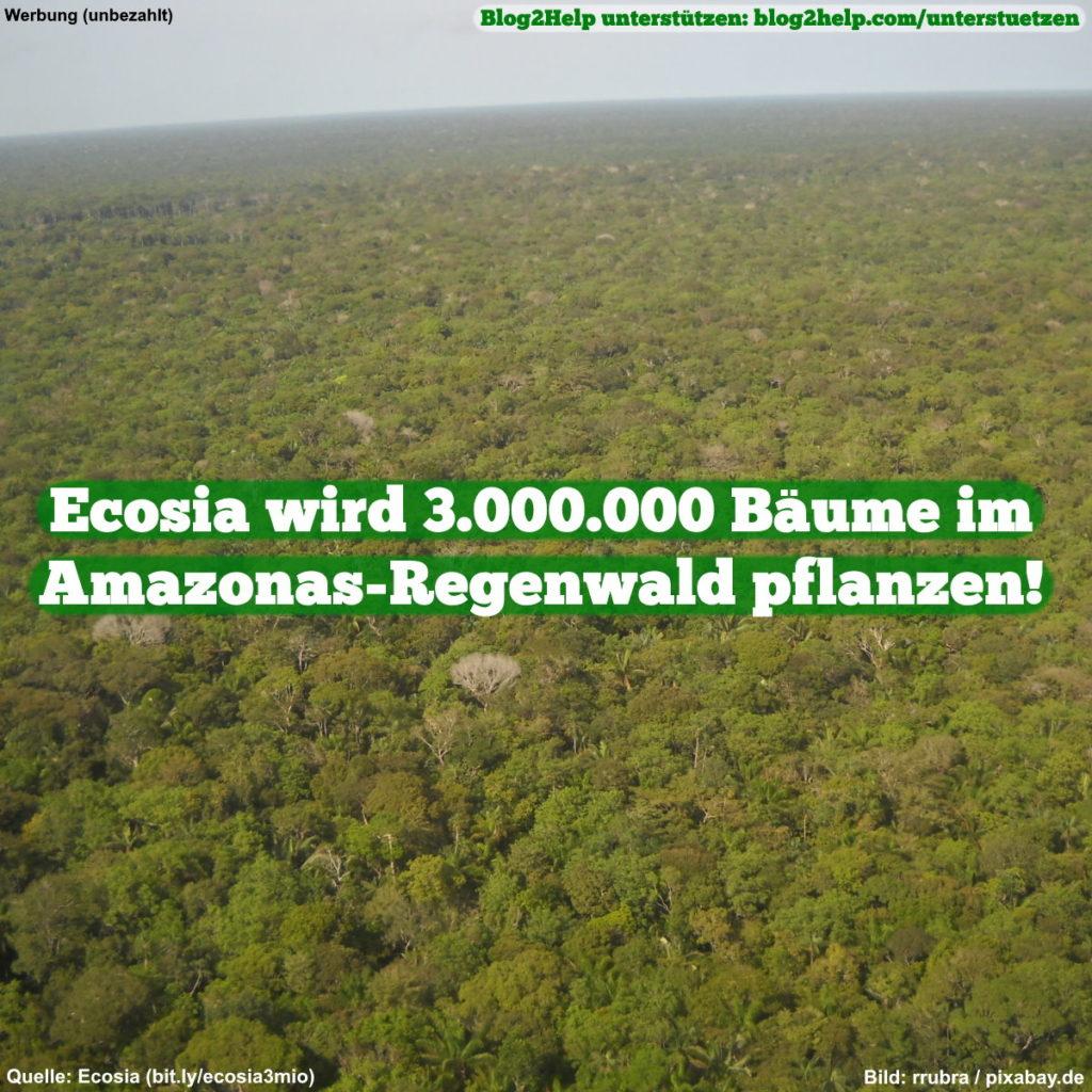 Ecosia wird 3.000.000 Bäume im Amazonas-Regenwald pflanzen