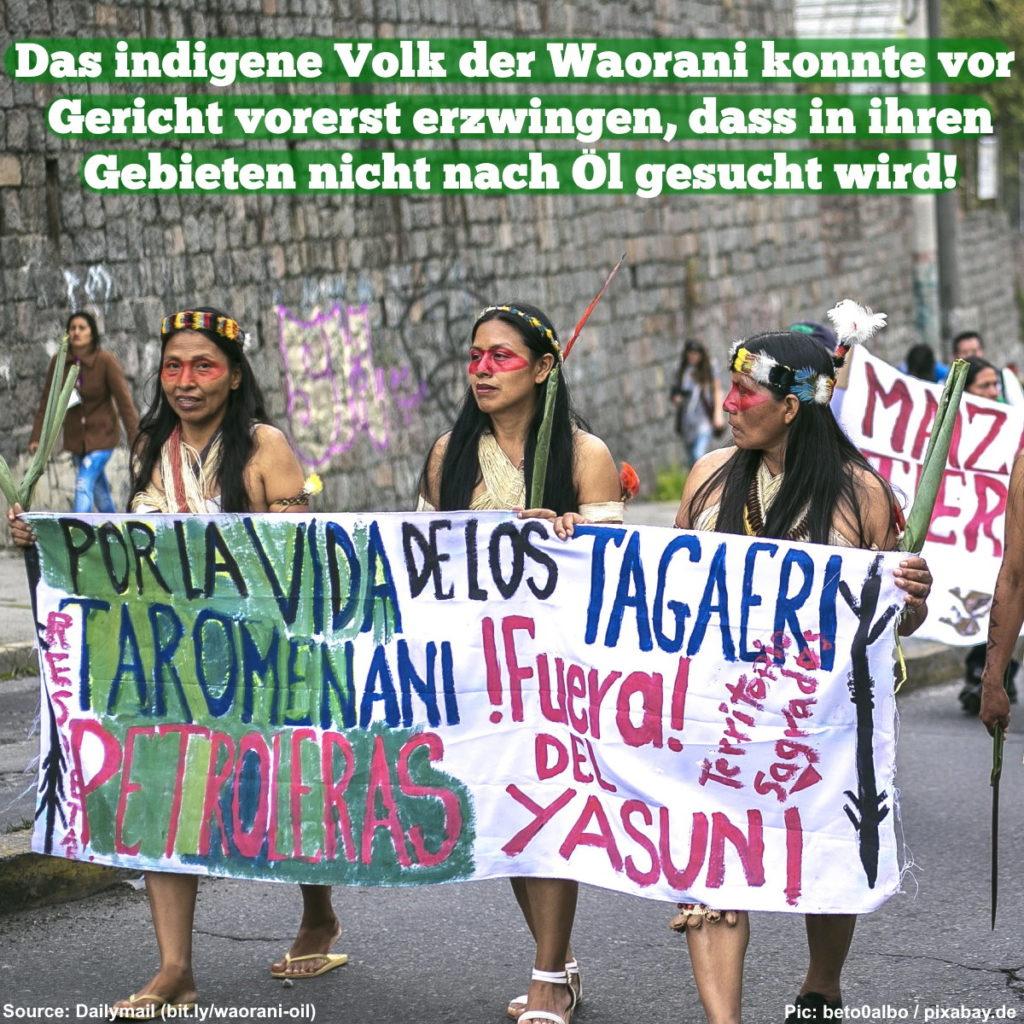 Das indigene Volk der Waorani konnte vor Gericht vorerst erzwingen, dass in ihren Gebieten nicht nach Öl gesucht wird!