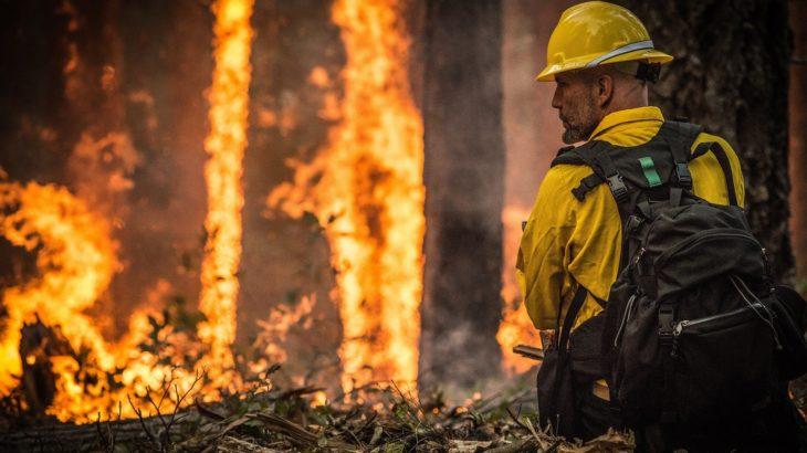 Waldbrand und ein Feuerwehrmann