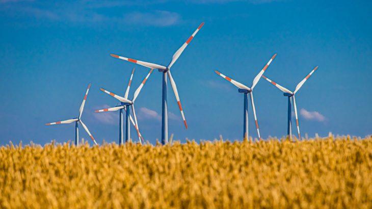 Windkraftwerke im Getreidefeld