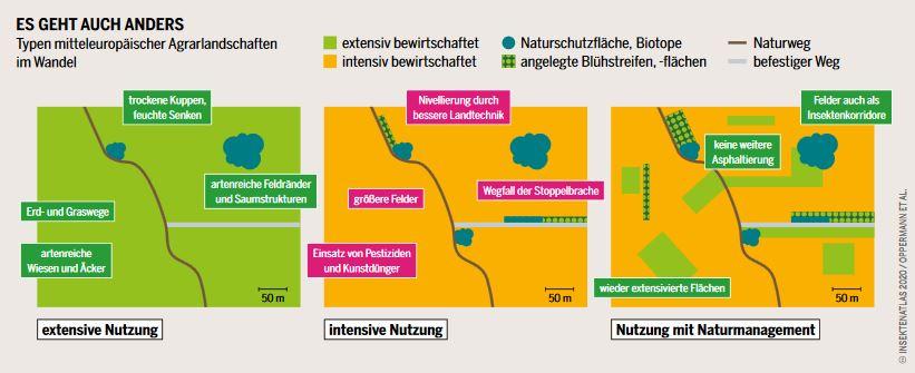 Unterschiedliche Formen der Landwirtschaft und die Auswirkungen auf die Insektenvielfalt.