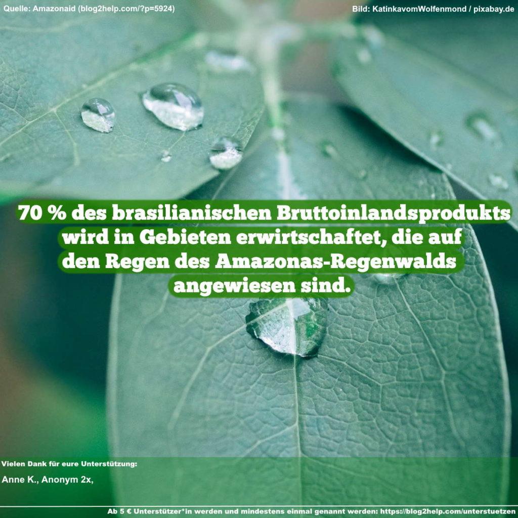 Meme - 70 % des brasilianischen Bruttoinlandsprodukts wird in Gebieten erwirtschaftet, die auf den Regen des Amazonas-Regenwalds angewiesen sind.