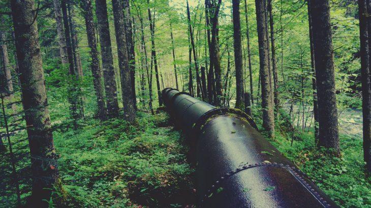 Pipeline durch den Wald