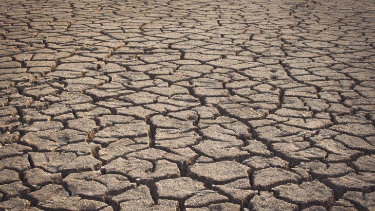 Dürrelandschaft